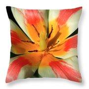 Flower Of Velvet Throw Pillow