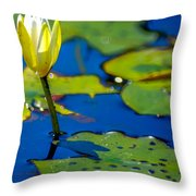 Sun Drenched Lilly  Throw Pillow