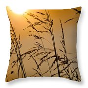 Sun Flood Throw Pillow