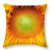 Sun Flower Power Throw Pillow