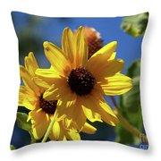 Sun Flowers Throw Pillow