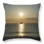 Sun Going Down In Cape May Throw Pillow