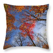 Sun In Fall Forest Canopy  Throw Pillow