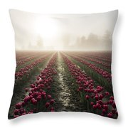 Sun In Fog And Tulips Throw Pillow