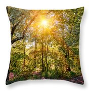 Sun In The Autumn Forest Throw Pillow