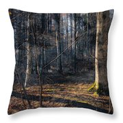 Sun In The Forest Throw Pillow