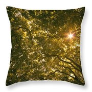 Sun In The Trees Throw Pillow
