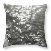 Sun In Water 2013 Throw Pillow