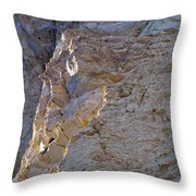 Sun Kissed At The End Of The Day Throw Pillow