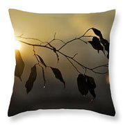 Sun Leaves Throw Pillow