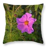Sun Lit Wildflower Throw Pillow