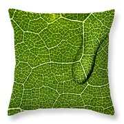 Sun Plus Water Equals To Life - Featured 3 Throw Pillow