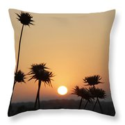 Sun Rise On Bethsaida Throw Pillow
