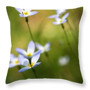 Sun Searching  Throw Pillow by Neal Eslinger