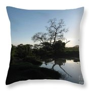Sun Sets On Africa Throw Pillow