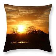 Sun Setting Over The Pond Throw Pillow