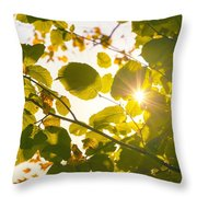 Sun Shining Through Leaves Throw Pillow