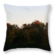 Sun Soaked Throw Pillow
