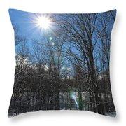 Sun Though The Trees  Throw Pillow
