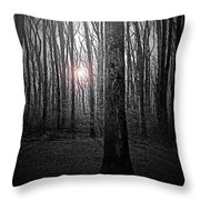 Sun Thru The Trees At Twilight Throw Pillow