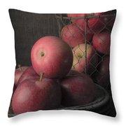 Sun Warmed Apples Still Life Throw Pillow