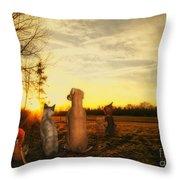 Sun Worshipers Throw Pillow