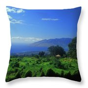 Sun Yat Sen Park Maui Hawaii Throw Pillow