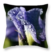 Sunbacked Throw Pillow