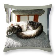 Sunbath Throw Pillow