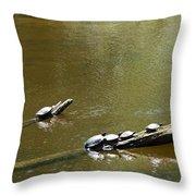 Sunbathing Turtles Throw Pillow