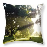 Sunbeam Landscape Throw Pillow
