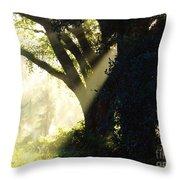 Sunbeam Tree Throw Pillow
