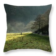 Sunbeams And Mist - Wolfscote Dale Throw Pillow