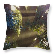 Sunbeams In The Tree Throw Pillow