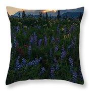 Sunbeams Over Rainier Throw Pillow