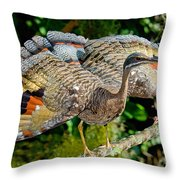 Sunbittern Displaying Throw Pillow