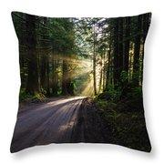 Sunburst At Redwood National Park Throw Pillow