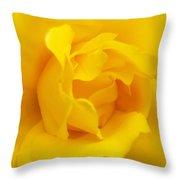 Sunburst Rose Flower Throw Pillow