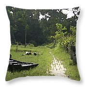 Sundarbans Throw Pillow