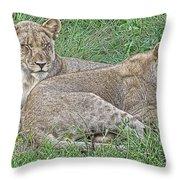 Sunday Afternoon Nap Throw Pillow