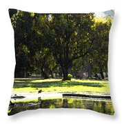 Sunday In The Park Throw Pillow by Anne Mott