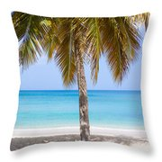 Sunday Palm Throw Pillow