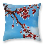 Sunday With Cherries On Top Throw Pillow