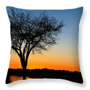 Sundown In South Carolina Throw Pillow by Ella Char