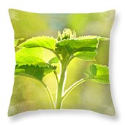 Sundrenched Sunflower - Digital Paint Throw Pillow