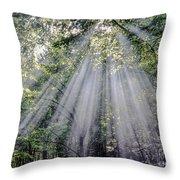 Sunfall Throw Pillow
