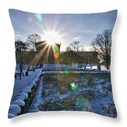 Sunflare At The Back Throw Pillow