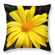Sunflare Throw Pillow