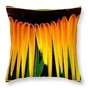 Sunflower Abstract 2 Throw Pillow