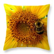 Sunflower And A Bee Throw Pillow